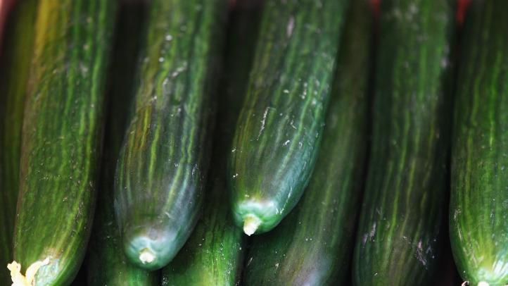 052911 cucumbers ecoli