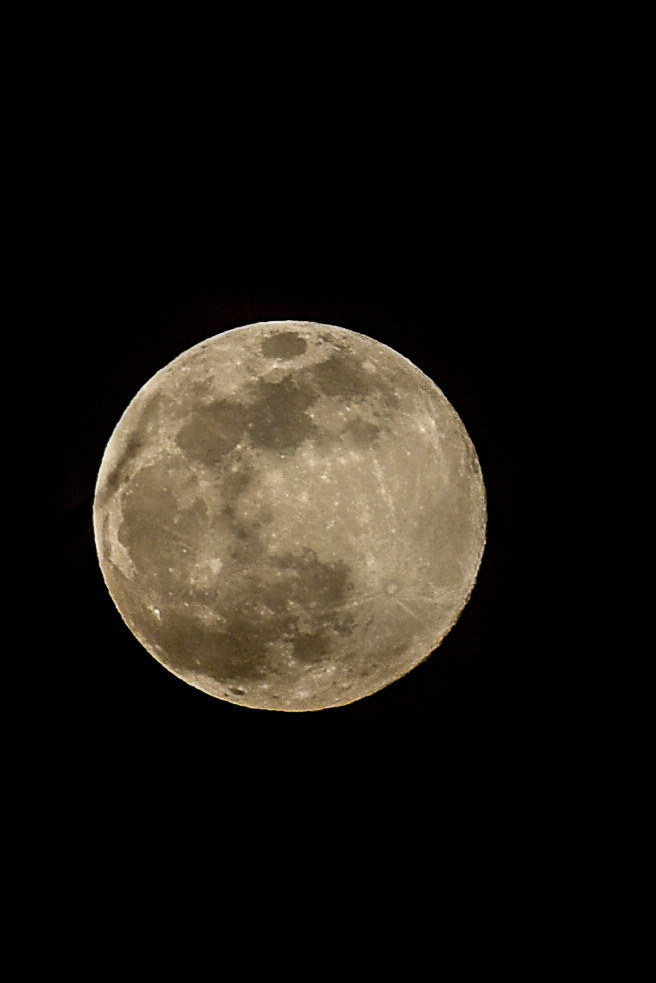 Your Supermoon Photos