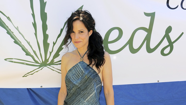 100th Episode of Weeds Cast Party