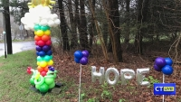 CT LIVE!: Balloon Artist Provides Hope And Brightness During Pandemic