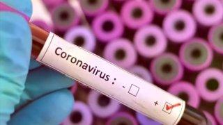 Coronavirus file