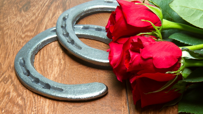 Red Roses - official flower of the Kentucky Derby with cast iron horseshoes on wood planks