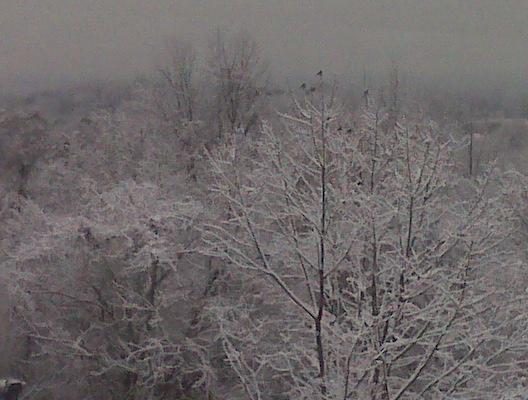 120708-ct-snow-new-haven
