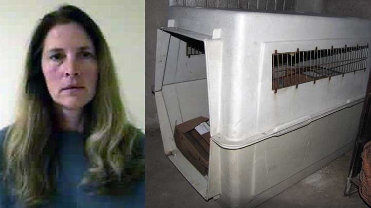 Kathlyn Anthony and dog crate