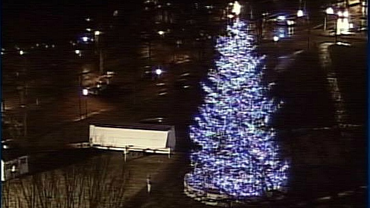 New Haven Christmas tree1