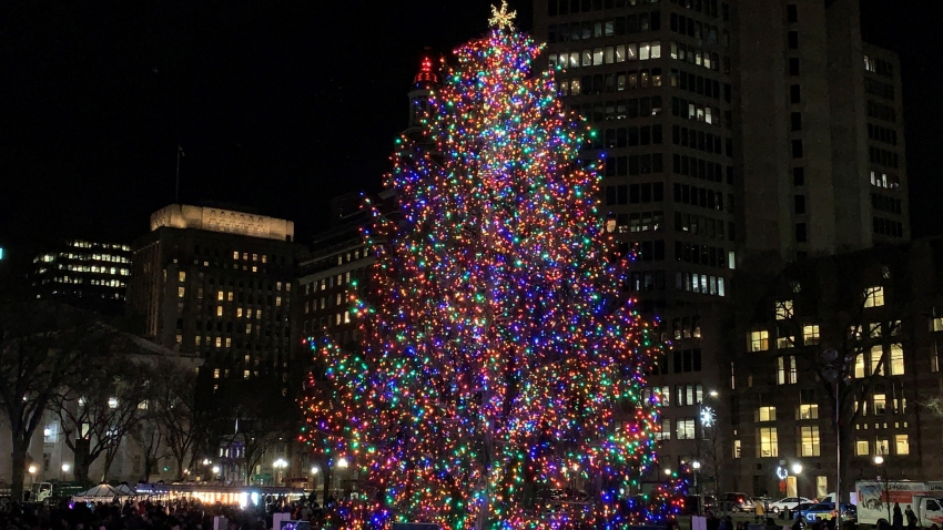 New Haven tree lighting 2019