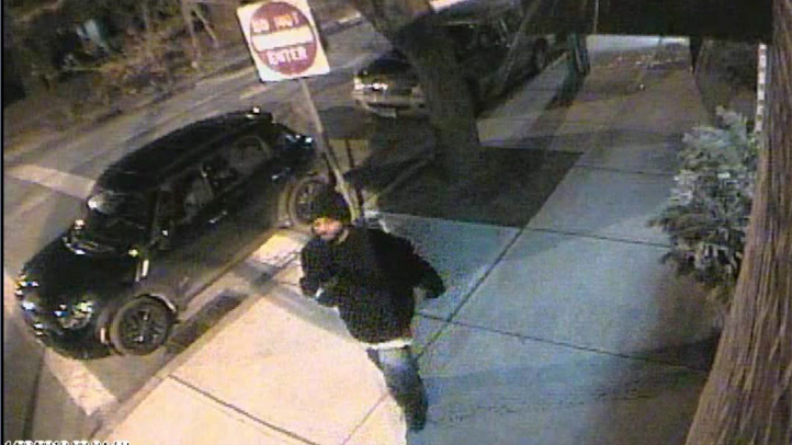 New haven purse snatching