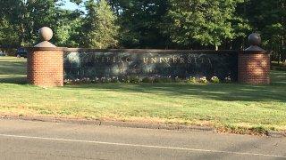 Quinnipiac university generic