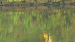 River-Generic-Water