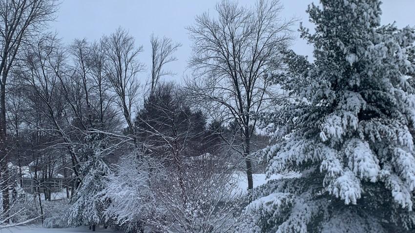 Sasha snow day 1200