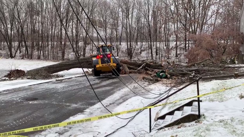 Tree down on Franklin Street in Meriden