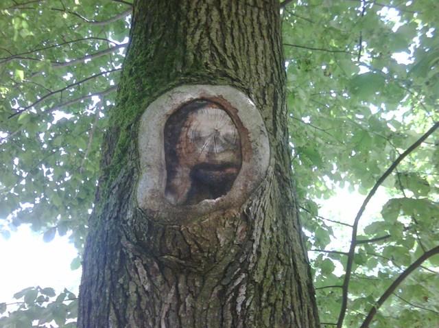Wallingford_Jesus_Tree