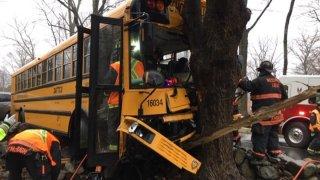 A bus crashedinto tree in Westport