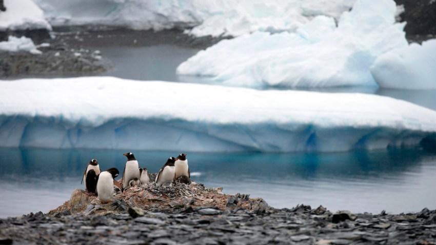 Airbnb Antarctic Sabbatical