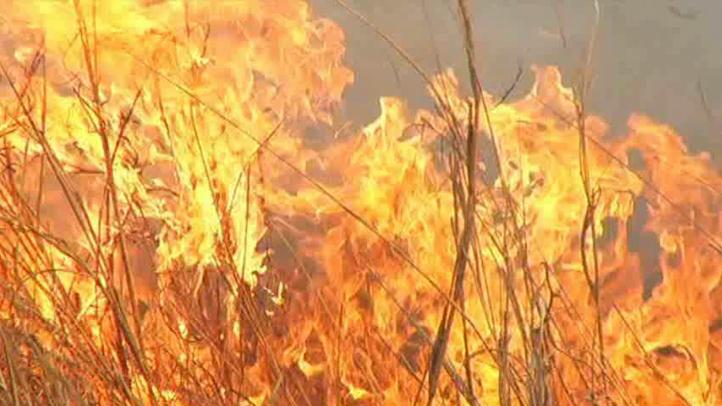 dfw-generic-wildfire-02