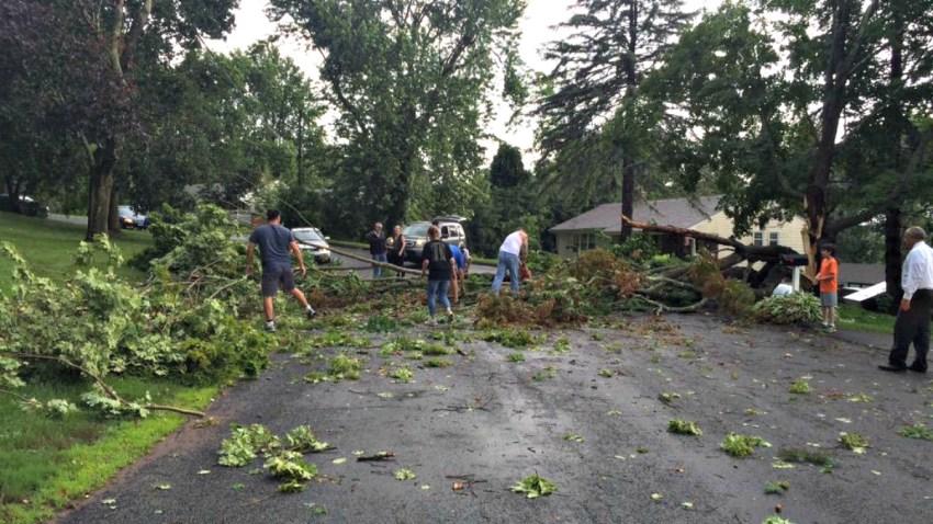 durham trees down_1200