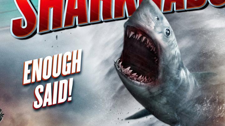 edt-Sharknado