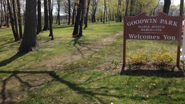 goodwin park assault