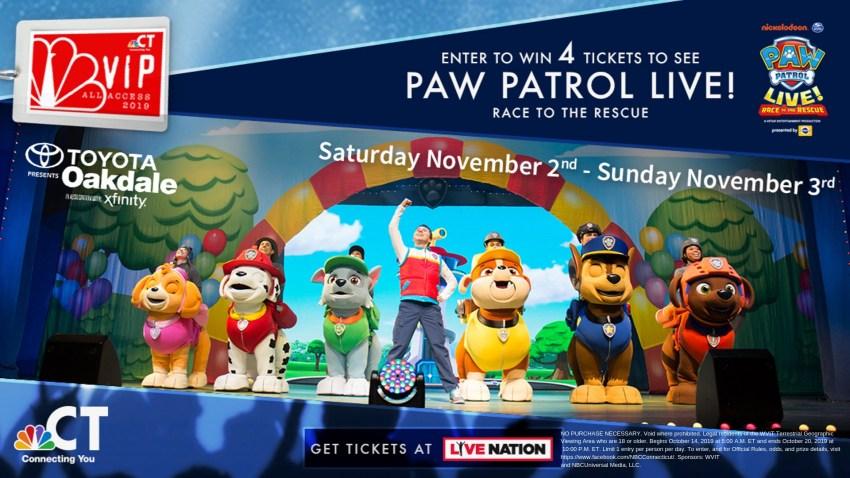 paw patrol image 2019