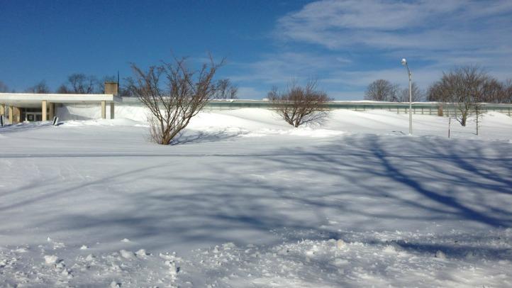 shelton school_snow