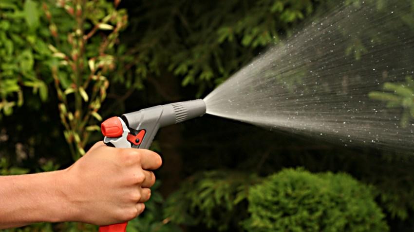 tree watering