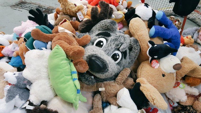 wolf pack teddy bear toss