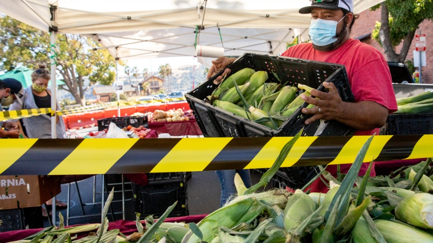 Aldo Perez of Jacob's Farms wears a mask while restocking corn at their booth at the Benicia Farmer's Market in Benicia, Calif. Thursday, July 30, 2020.