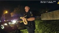 North Florida Officers Find 'Emotional Support Snake' During DUI Traffic Stop