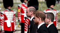Harry, William Seen Chatting Together After Royal Funeral