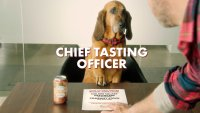 Busch Beer Is Hiring a 'Chief Tasting Officer' for Its Dog Brew