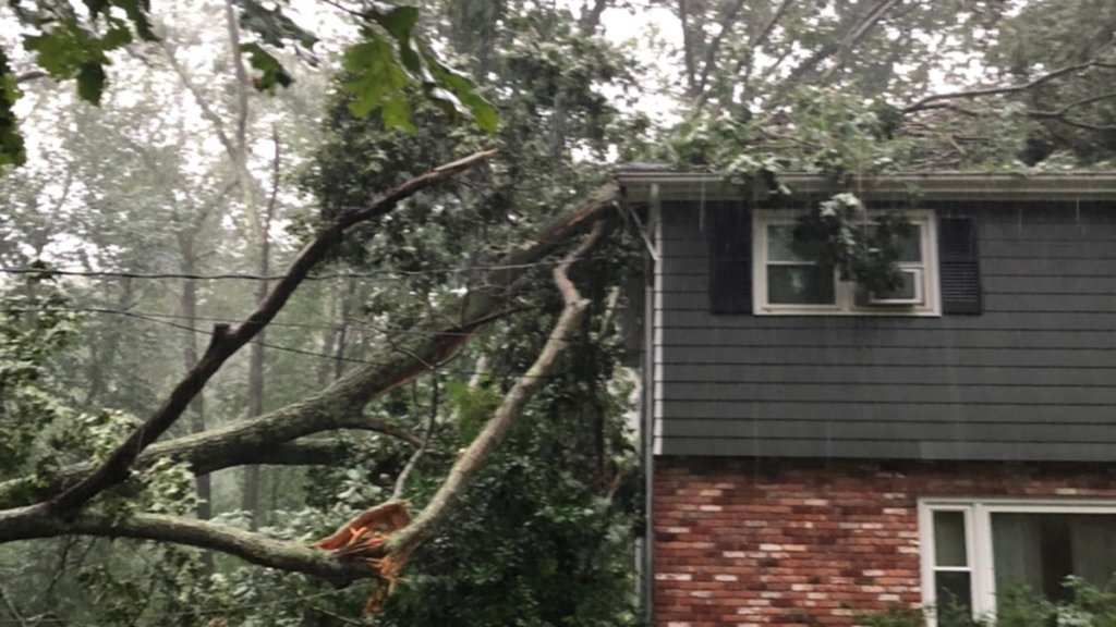Tree down on a house in Gales Ferry