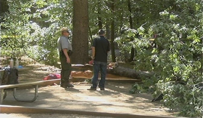 A limb from an oak tree fell on a popular part of Yosemite Valley on Friday, killing two young campers who were sleeping in a tent, officials said. (Aug. 14, 2015)