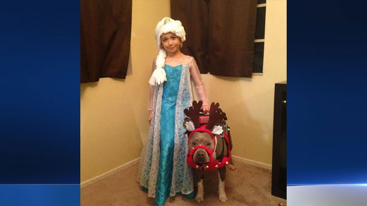 A 7-year-old girl and her service pit bull named Pup-Cake were turned down by a mall Santa in Orange County on Sunday, Nov. 30, 2014.