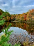 Your Fall Foliage Photos