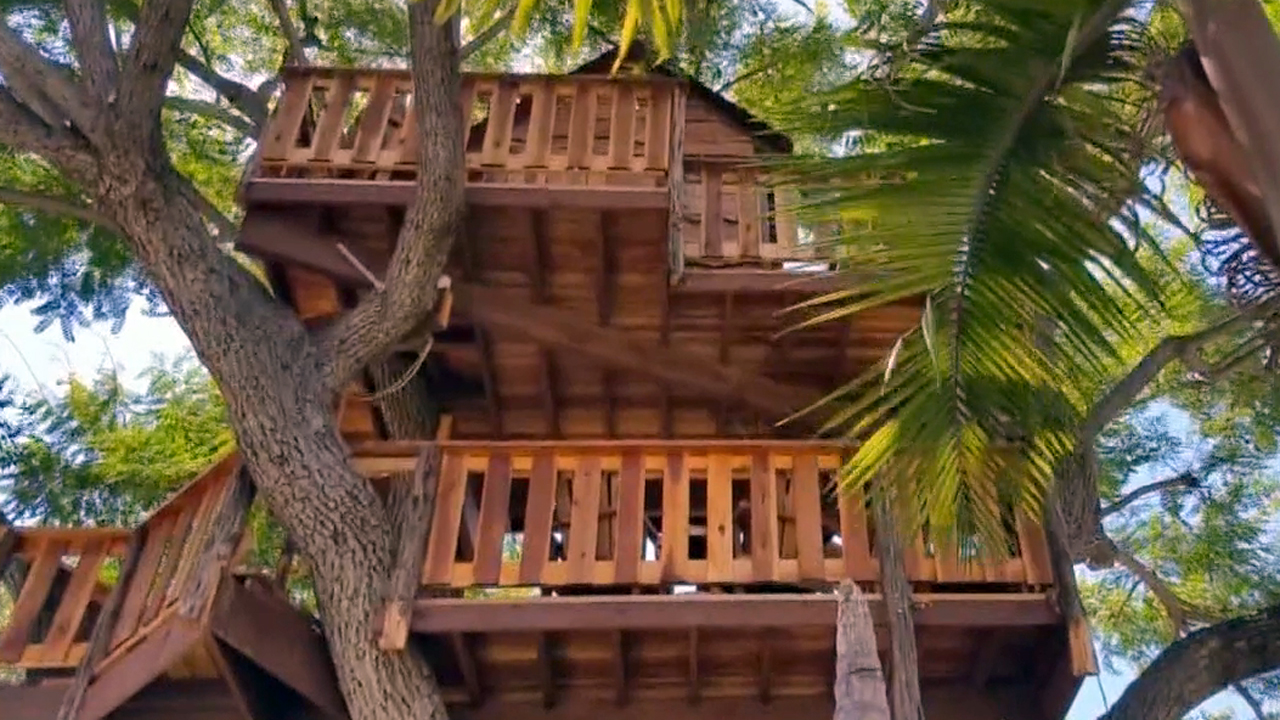An Orange County woman spent $16,000 to build a tree house in memory of her late husband. On Saturday, Aug. 29, 2015, neighbors rallied to help save the tree house after the woman received a code violations letter from the county.