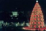 1995 National Christmas Tree