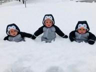 [UGCHAR-CJ-weather]Three Penguins