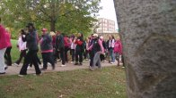 Making Strides Against Breast Cancer Walk Draws Thousands