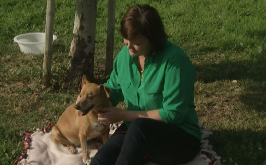 A dog that was plucked from the rushing Los Angeles River in a dramatic helicopter rescue is being adopted by the woman who first saw him in trouble.