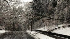 Thousands Without Power as Ice Coats Trees, Power Lines