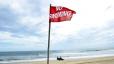 No Swimming at West Haven Beaches for Sewage, Black Algae in...