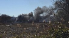 Firefighters Battle Brush Fire in Milford