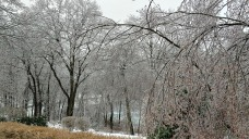 Snow Turns Over to Sleet, Ice