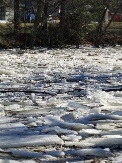 Your Ice Jam Photos