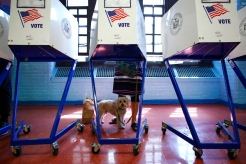 New Yorkers Vote in Contested Primary: April 19