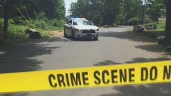 New Haven Police Investigate Sexual Assault in East Rock Park
