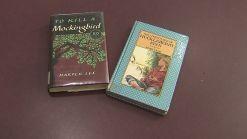 Virgina School Pulls Books From Shelves
