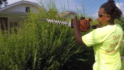 Free Lawn Care Inspires Community