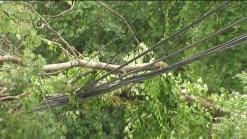 Newtown Storm Damage