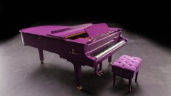 Prince's Custom Purple Piano Was for Upcoming Tour